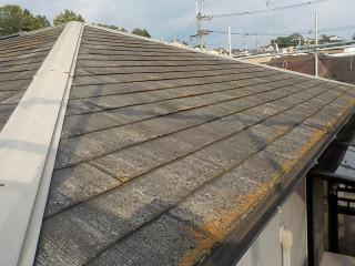 清掃前の屋根