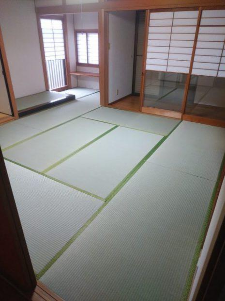新しい畳②