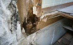 出入り口の柱の腐食